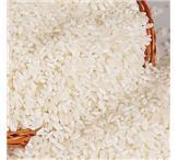 采购大量大米